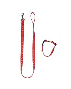 Collar & Lead Set