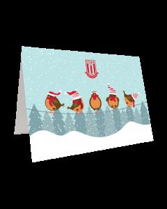 Robins Christmas Card