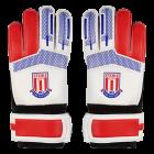 Dixon GK Gloves