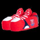 Novelty Boot Slippers