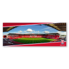 Stadium Panoramic Postcard